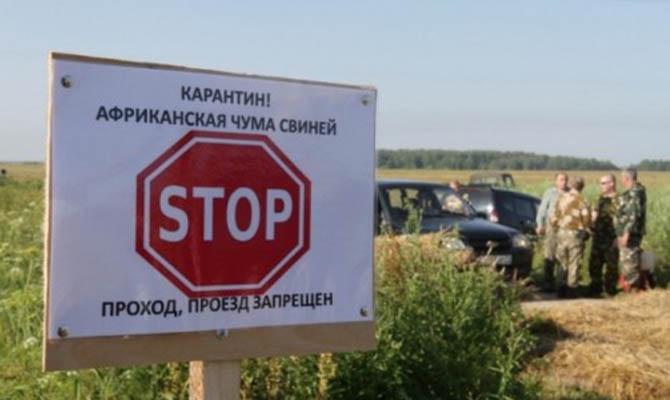 Вспышка АЧС: в радиусе 20 км карантинные зоны