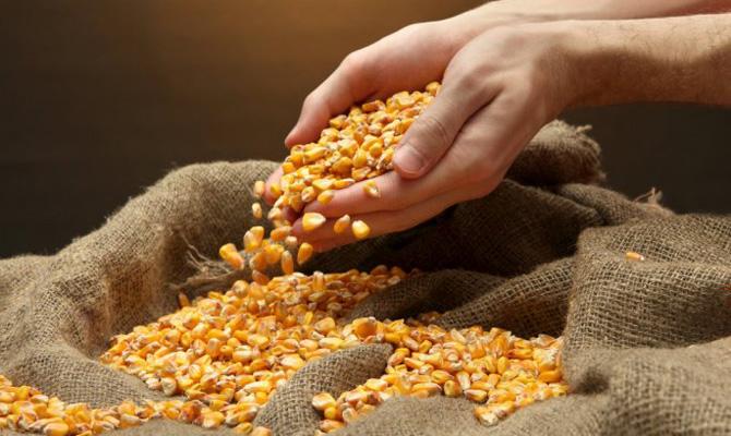 Минсельхоз США увеличил прогноз экспорта зерна из государства Украины