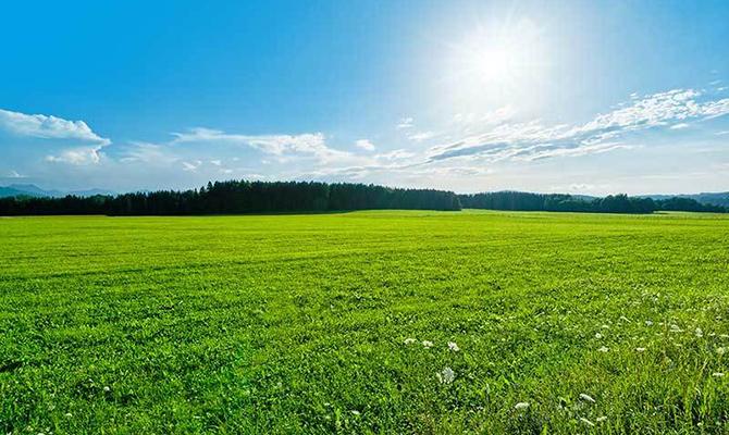 Минагропрод инициирует введение ряда дотаций малым исредним агропроизводителям