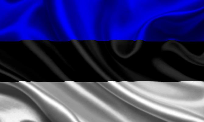 ВЭстонии зарегистрируют уникального кандидата впрезиденты