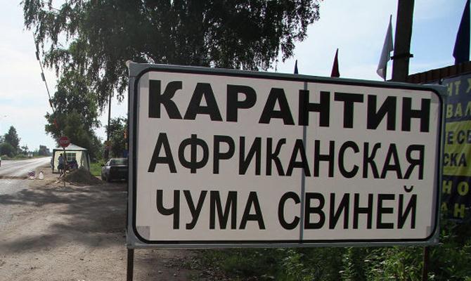 ВХарьковской области зафиксировали новую вспышку африканской чумы