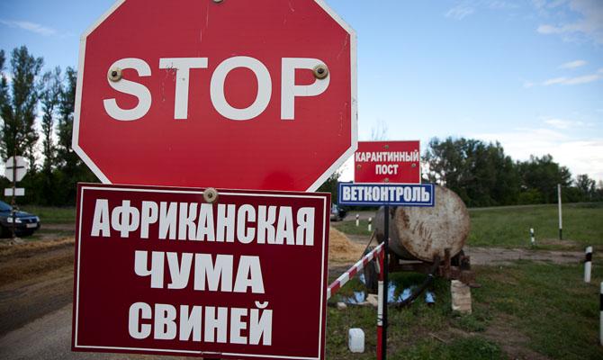 Вгосударстве Украина зафиксировали вспышки африканской чумы свиней сразу вчетырех областях