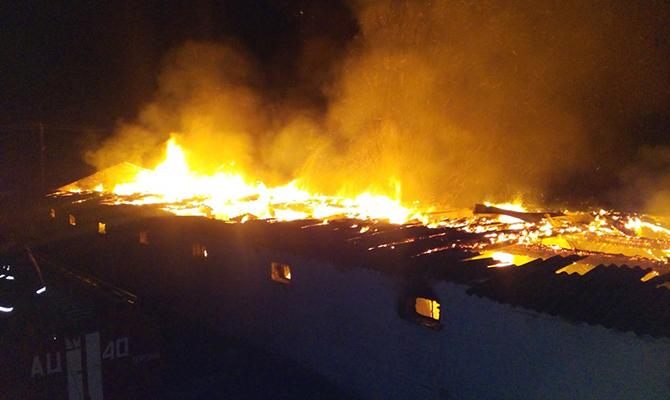 ГСЧС: Пожарные спасли практически 10 тыс кур вКиевской области
