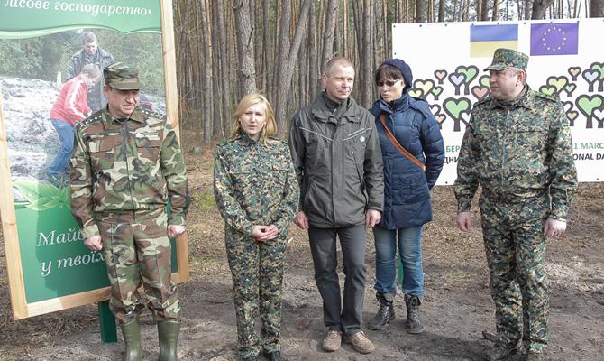 В Украине посадят 50 тысяч гектаров леса