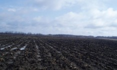 Украина повышает эффективность управления земельными ресурсами при содействии международных доноров, - Мартынюк