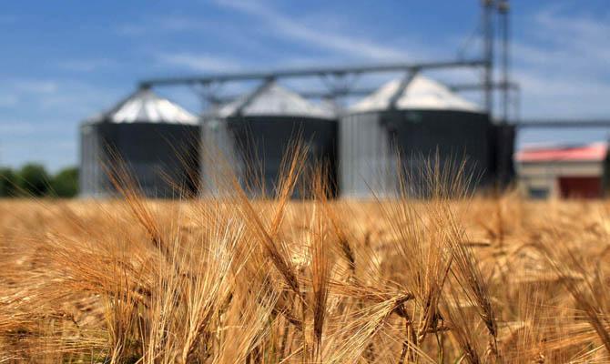 Украина обновила рекорд экспорта зерновых— Аграрная супердержава