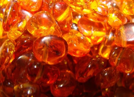 В Ровенской области полиция изъяла янтарь на 2 млн грн