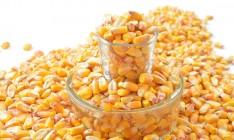 Monsanto запускает семенной завод в Украине