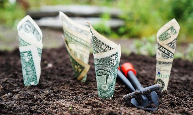 Аграрии получили почти 2 млрд грн бюджетных дотаций