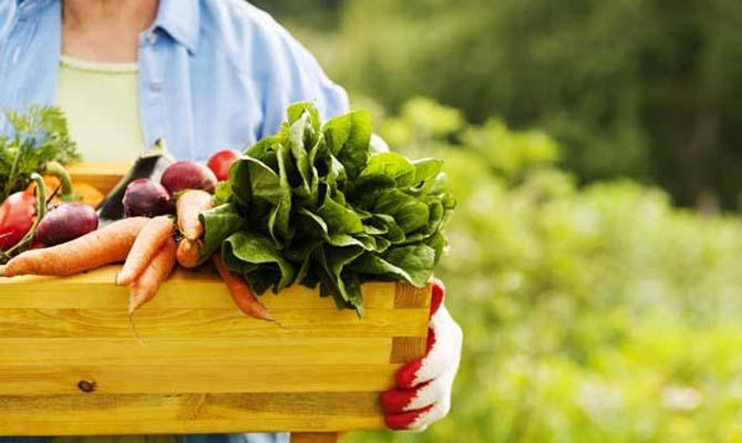 Кабмин утвердил программу поддержки фермерства на 2018-2020 годы