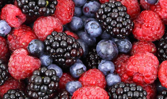 Украина вразы нарастила экспорт ягод вЕвропу