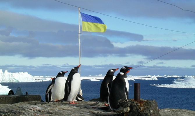 В Украине на экспедицию в Антарктиду потратят 45 млн гривен