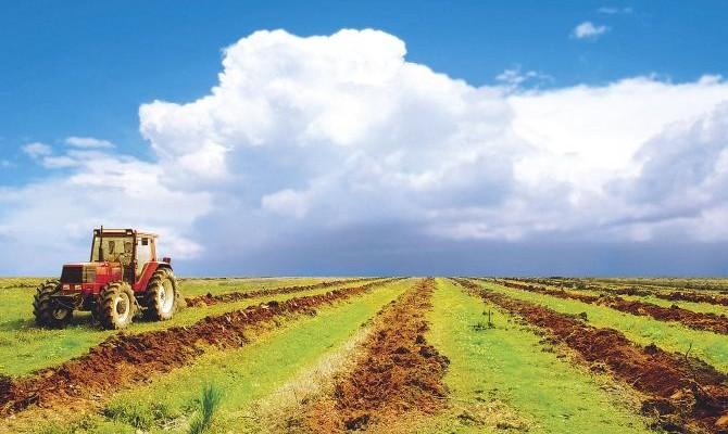 Теневая аренда земли в Украине оценивается в 11,7 млн га