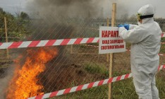 Россия установила карантинную зону на границе с ОРДЛО