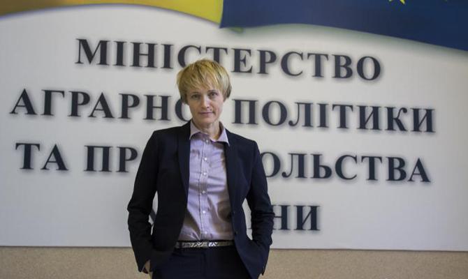 Экспорт украинской аграрной продукции в Евросоюз увеличился на 28%