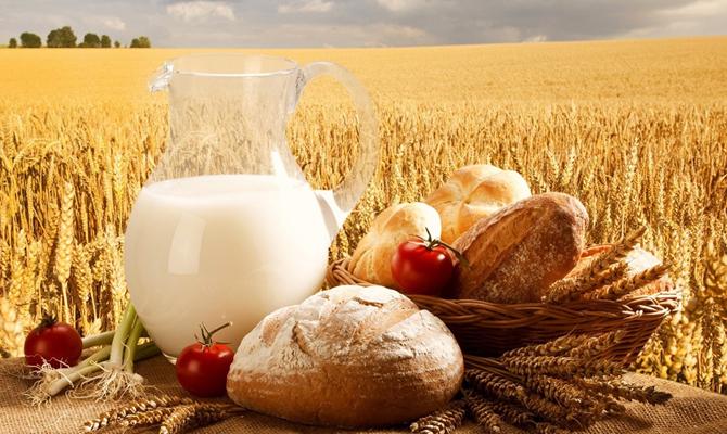 Аграрный экспорт Украины в страны ЕС увеличился на 145 млн долларов