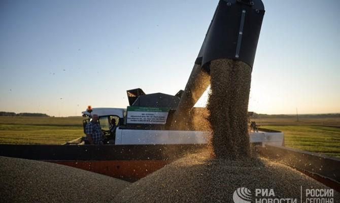 В Крыму собрали только половину от прошлогоднего урожая