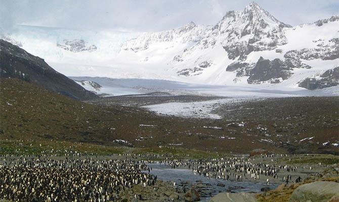В Антарктиде зарегистрирована самая высокая температура за все время наблюдений