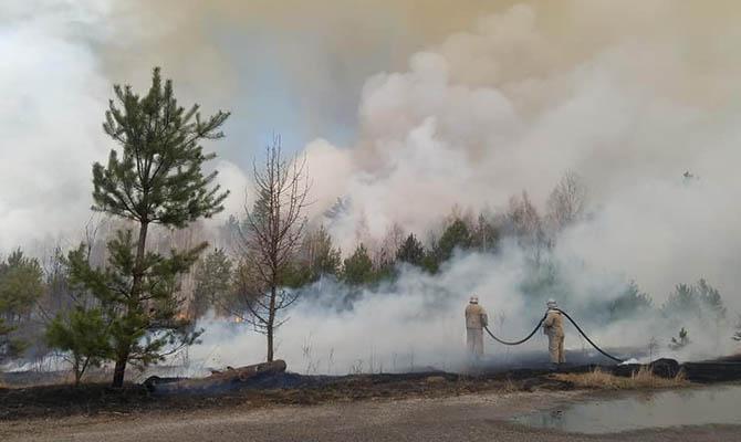 В Житомирской области и Чернобыльской зоне продолжается тушение лесных пожаров