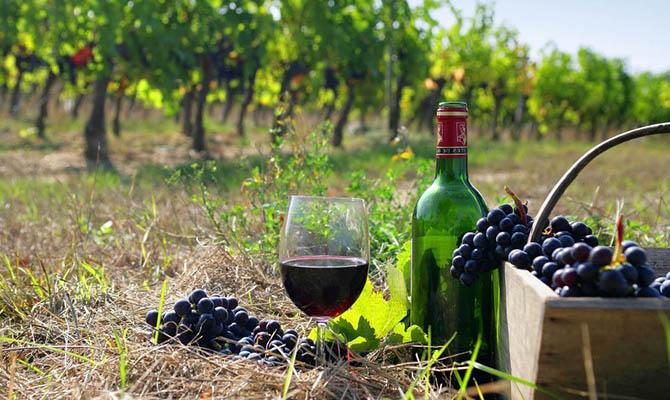 Минэкономики предлагает исключить из подакцизных товаров натуральные вина