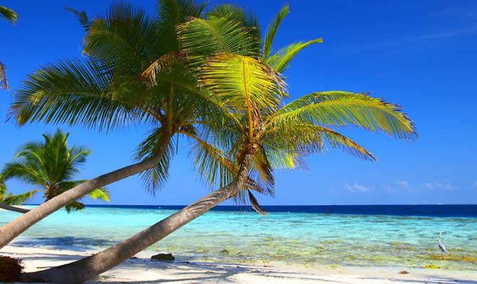 На Гавайях официально запретили продажу солнцезащитных кремов