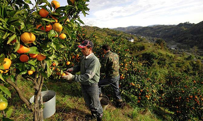 Испания начала проект по переходу на 4-дневную рабочую неделю
