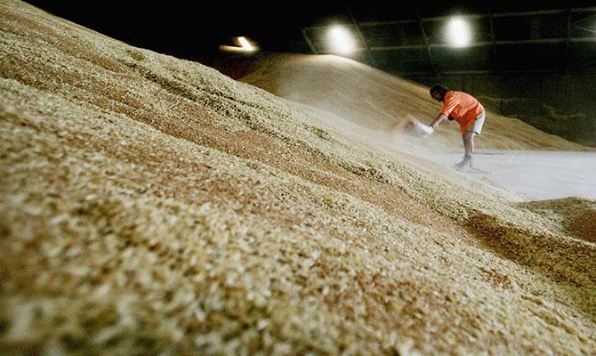 Украина существенно снизила экспорт зерновых