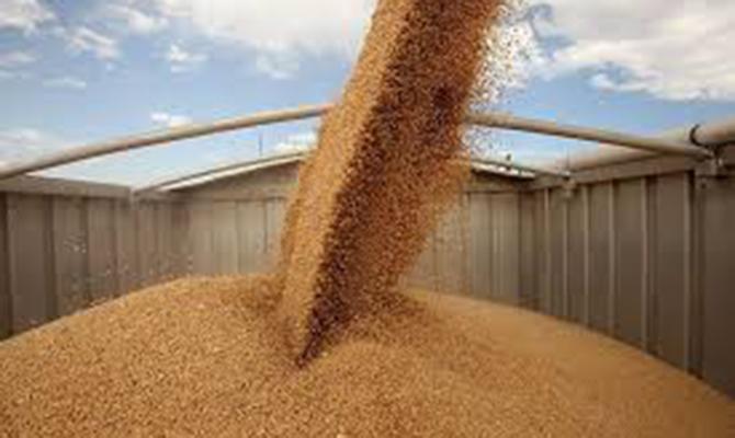 Китай заинтересован в наращивании поставок украинских зерновых и бобовых, - Минэкономики
