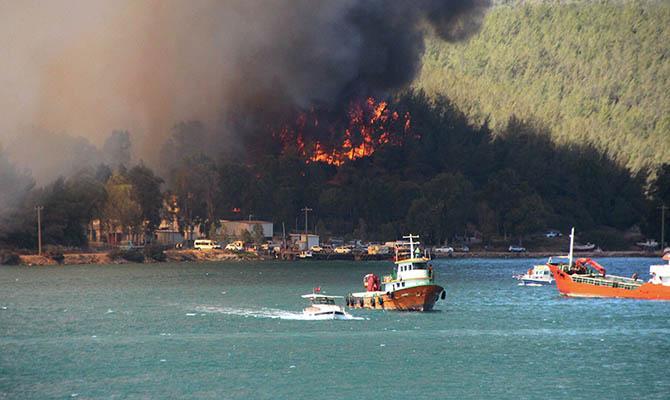 Более 400 человек пострадали от лесных пожаров в Турции